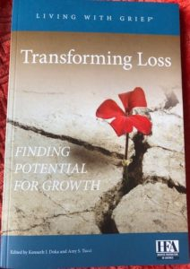 Book Cover: Final Transforming Loss